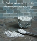 Foodless Friday – The Many Health Benefits of Diatomaceous Earth