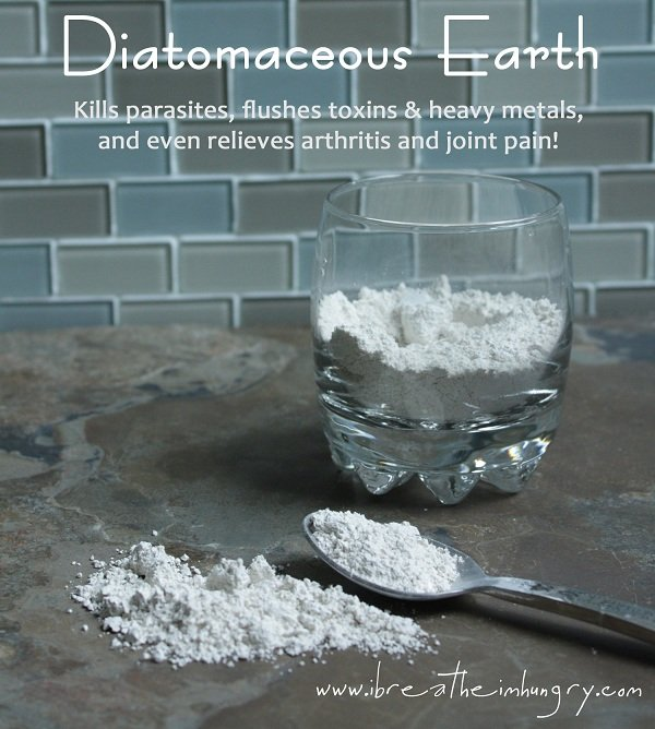 diatomaceous earth benefits