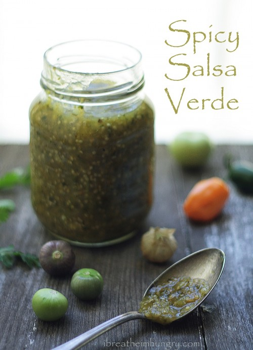 Spicy Salsa Verde Recipe - Low Carb and Gluten Free - I Breathe... I'm ...