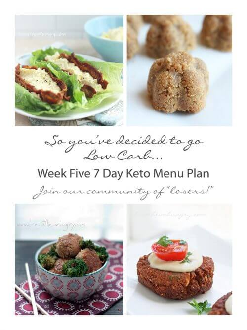 Menu plan and recipes for low carb weight loss