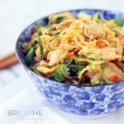 A low carb lo mein recipe from Mellissa Sevigny of I Breathe Im Hungry