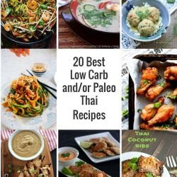 20 Best Low Carb and/or Paleo Thai Recipes - ibreatheimhungry.com
