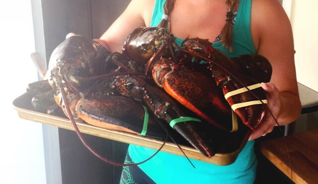 Low Carb Lobsters on the Grill by Mellissa Sevigny of I Breathe Im Hungry