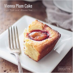 A low carb and gluten free Vienna Plum Cake recipe - sweet and dense vanilla almond cake with tangy, juicy plums baked into the top.