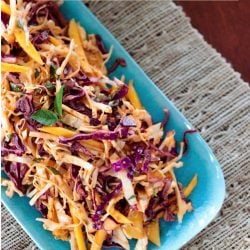 This fantastic tropical slaw recipe makes the perfect side dish to all of your grilled meats this summer! Vegan, Paleo, Whole 30
