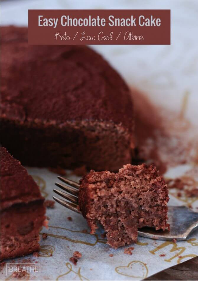 Make this Easy Keto Chocolate Snack Cake in the blender in just minutes! Low Carb and Gluten Free!