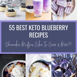 55 Best Keto Blueberry Recipes