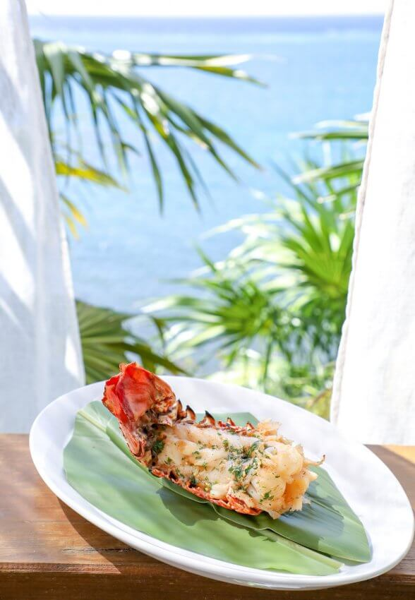 Keto Grilled Lobster Tails with Creole Butter with ocean in background